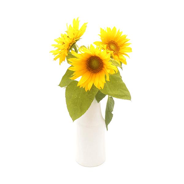 Blanche Vase